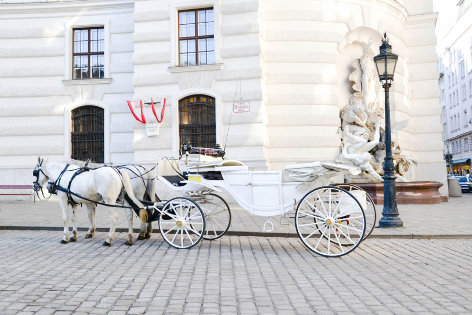 A horse-drawn carriage with white Lipizzan horses on Michaelerplatz in Innere Stadt Wien, Austria