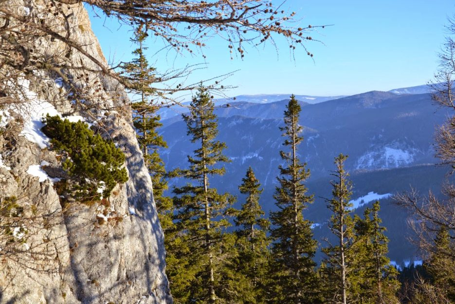Wandering around the Rax mountain in Wiener Hausberge, Viennese Alps, Austria