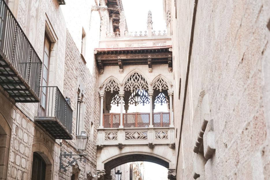 Barcelona-Carrer-del-Bisbe-Barri-Gotic-by-epepaeu