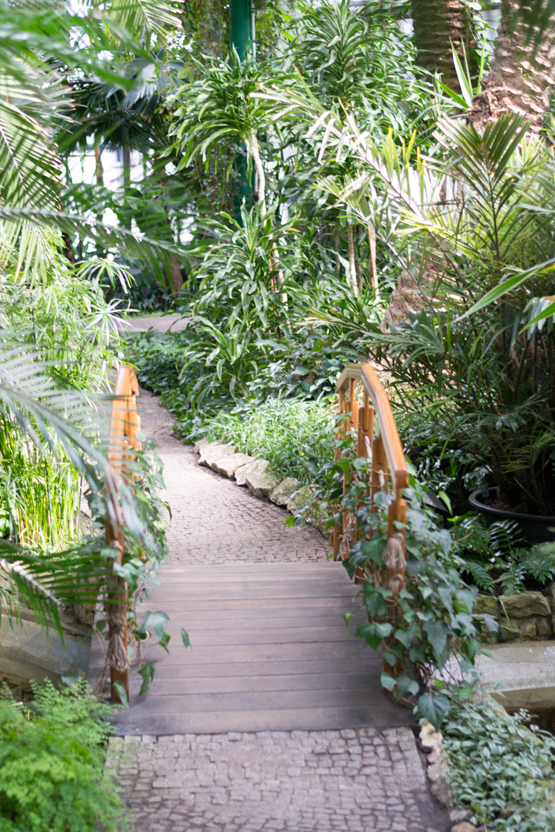 Gliwice-Palm-House-Japanese-Bridge-epepa