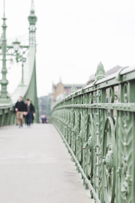 The Liberty Bridge, one of the top things to see in Budapest - Epepa Travel Blog