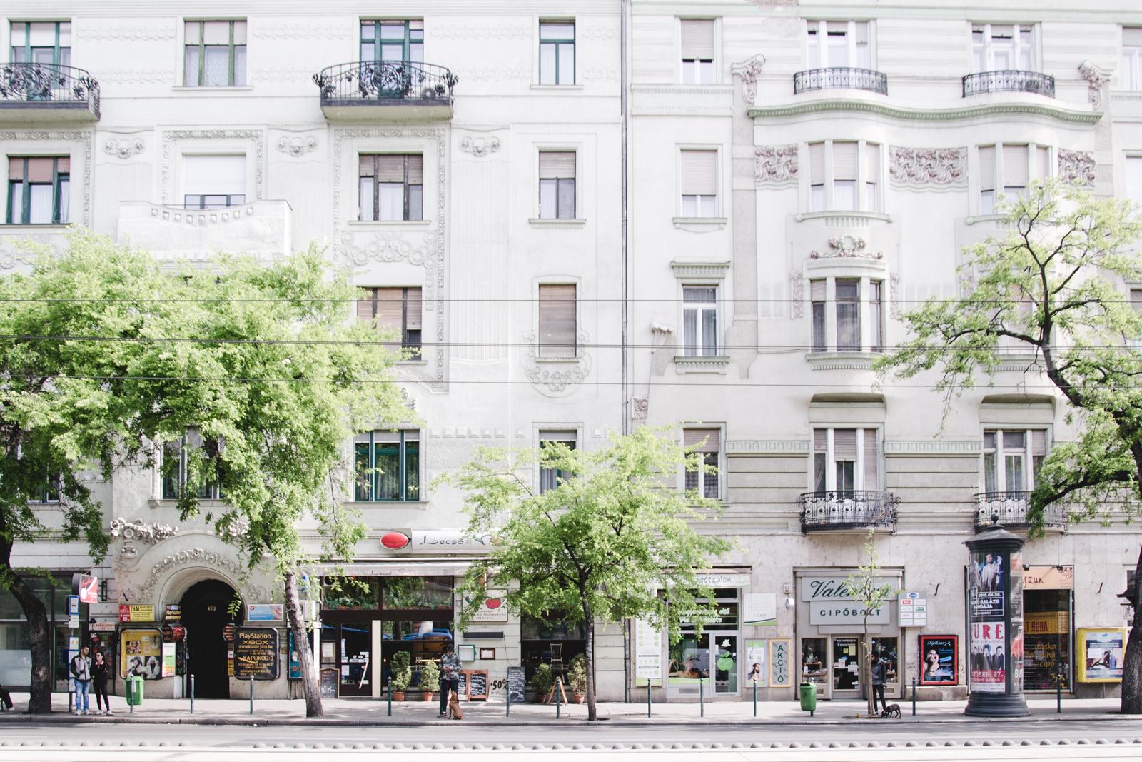 szent-istavan-street-in-budapest