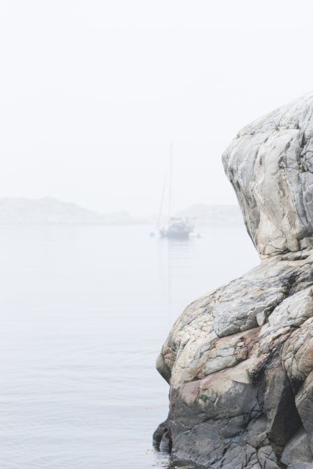 A foggy morning in Styrsö Uttervik, Styrsö Island
