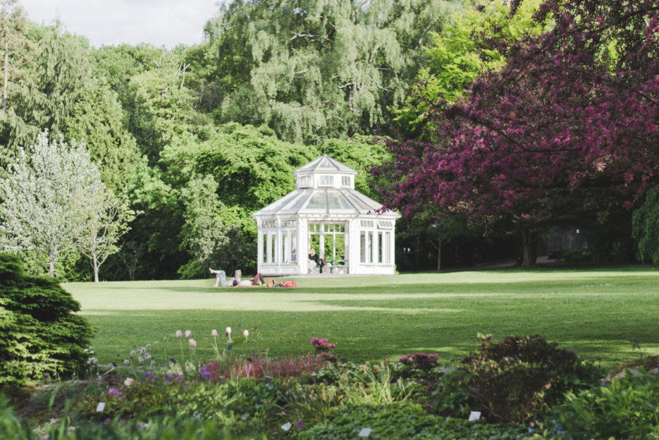 Botanic Garden, one of the top attractions of Gothenburg, Sweden - Epepa Travel Blog