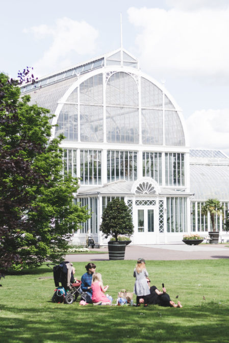 The Palm House, one of the TOP things to see in Gothenburg, Sweden - Epepa Travel Blog