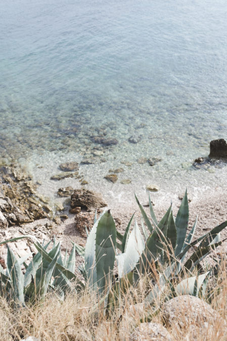 Agaves and the secret beach on Hvar - from travel blog https://epepa.eu/