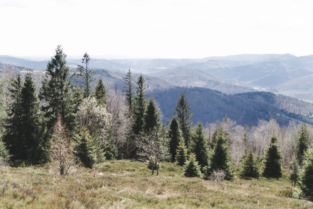 The Silesian Beskids range from Równica Mountain, Poland - from travel blog: http://Epepa.eu