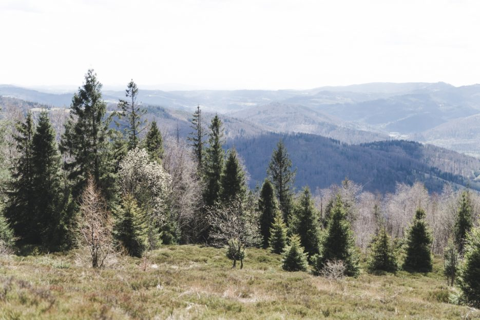 The Silesian Beskids range from Równica Mountain, Poland - from travel blog: https://epepa.eu/