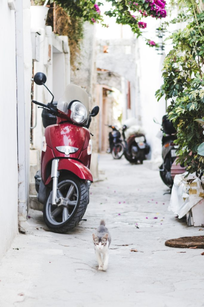 Scooters and cats in Rhodes Town, Greece - from travel blog: http://Epepa.eu