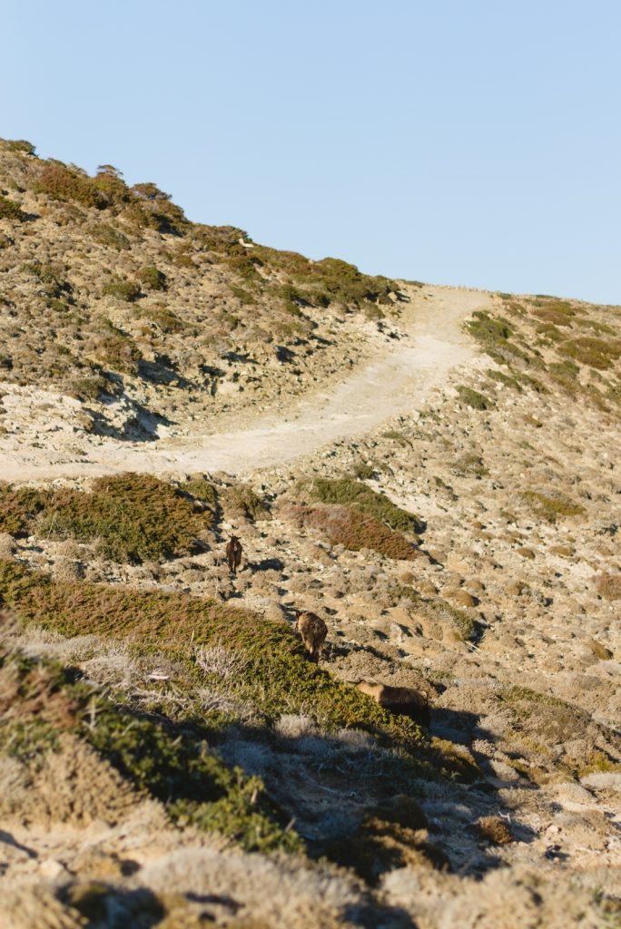 Trekking in Prasonisi, Rhodes - from travel blog: http://Epepa.eu