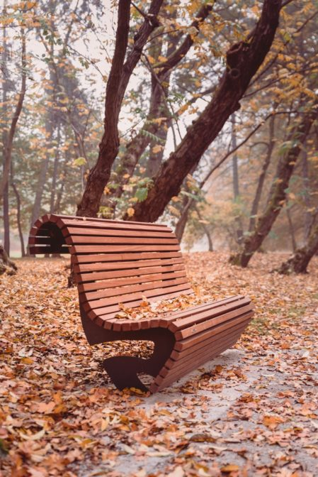 Park Chrobrego (Chrobry Park) in Gliwice, Poland