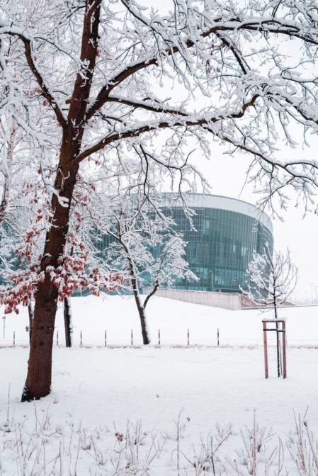 Arena Gliwice in winter time