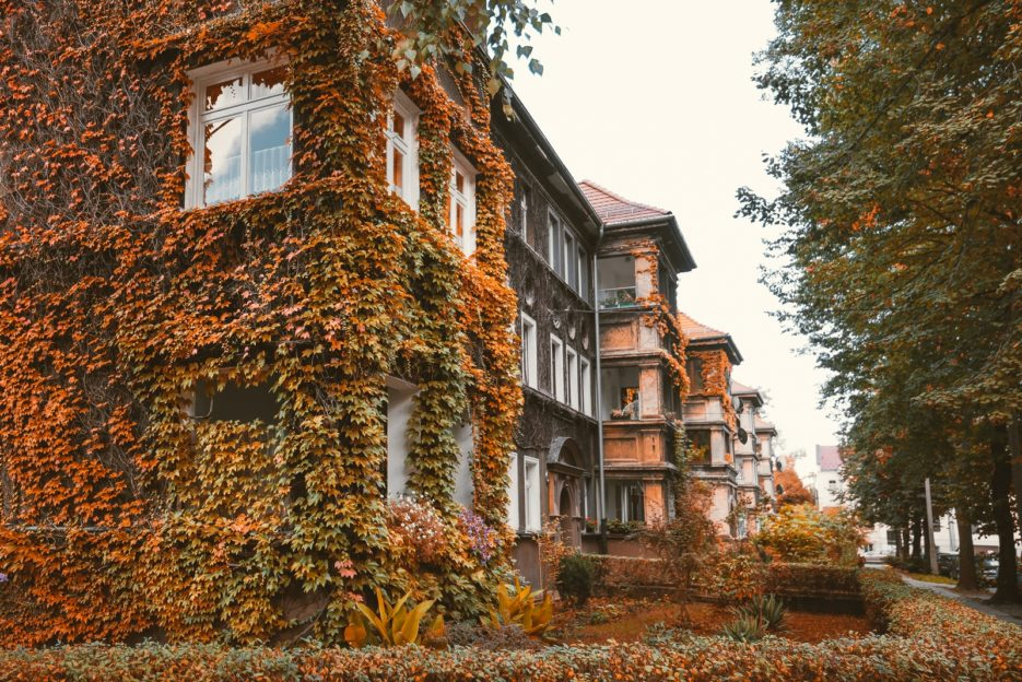 An ivy-covered townhouse on Lelewela Street, Gliwice, Poland