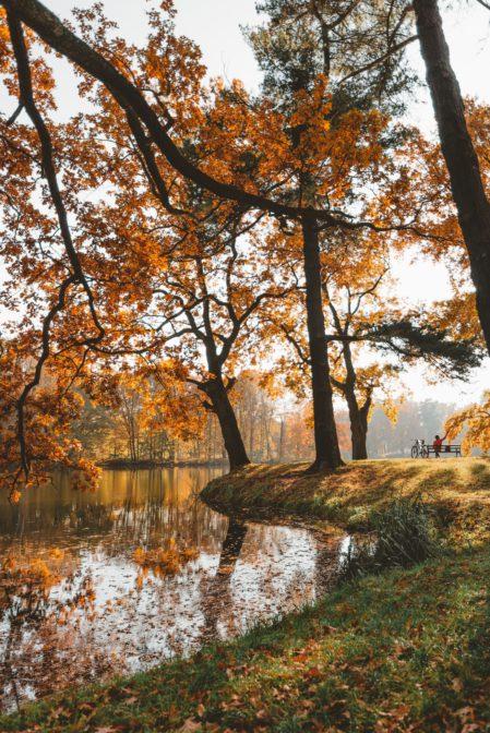 Świerklaniec Park, the most beautiful park in Silesia, Poland