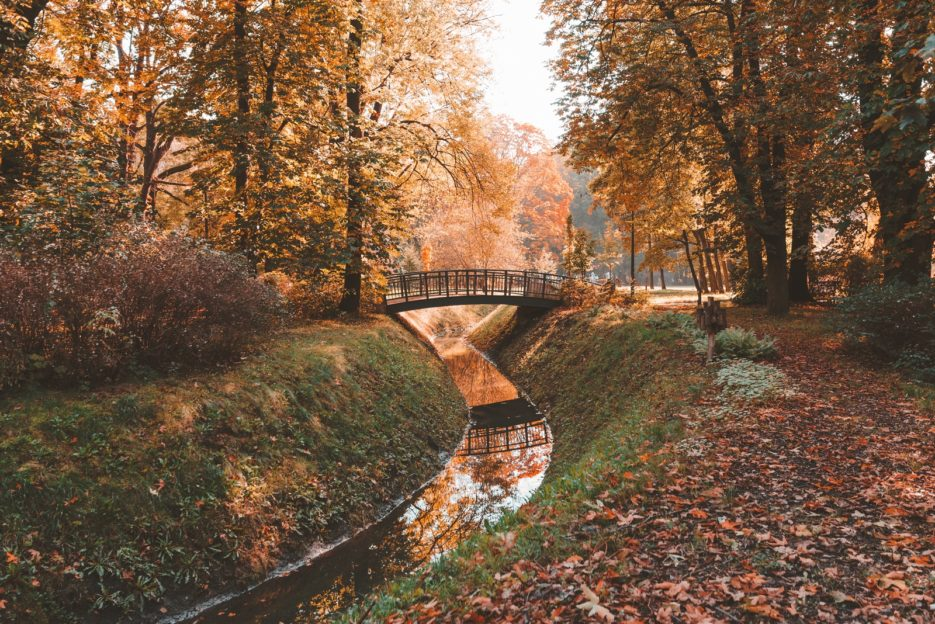 Bridge in Chrobry Park, Gliwice, Poland