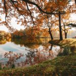 Świerklaniec Park, Poland – a beautiful autumn walk