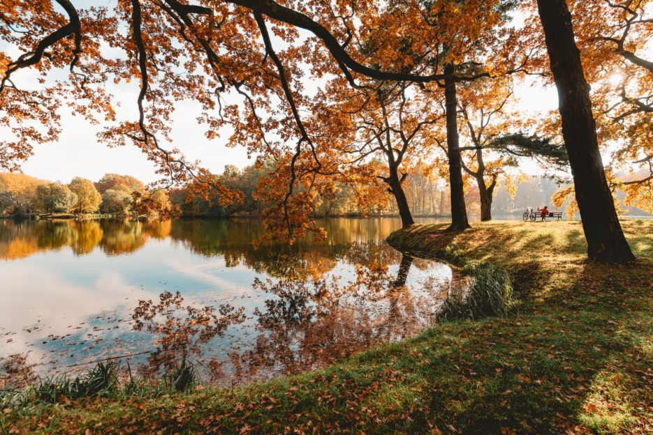 Świerklaniec Park, Poland - the most beautiful park in Silesia in autumn colors